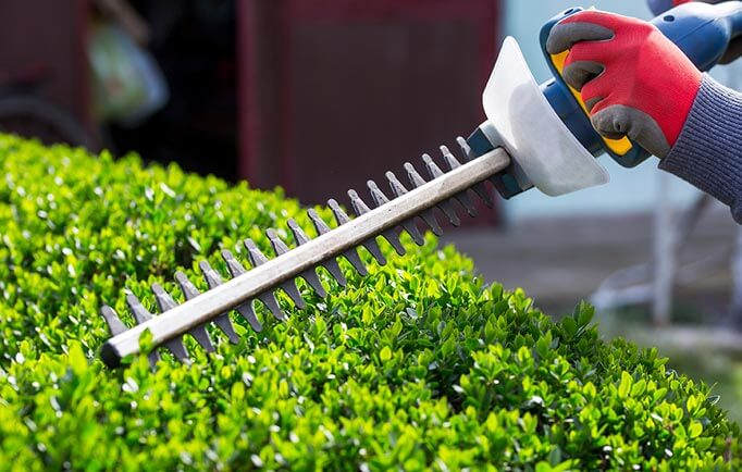 Hedge-cutting gadget