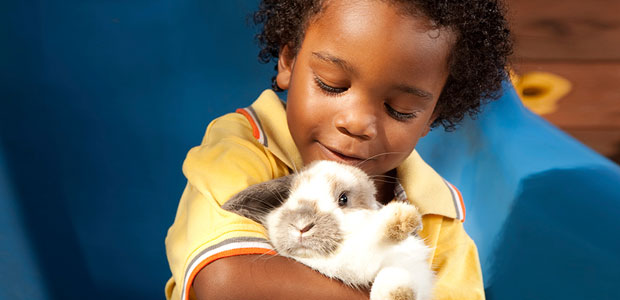 Toddler cuddling rabbit in a yellow shirt