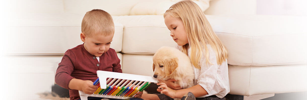 Photo of two children using an abacus, with the girl holding a Golden Retriever puppy