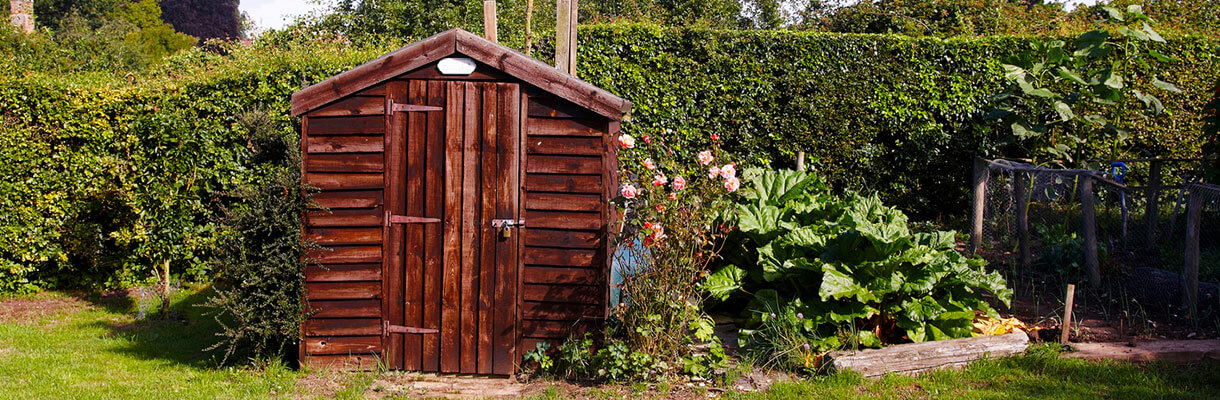 Garden shed in summer