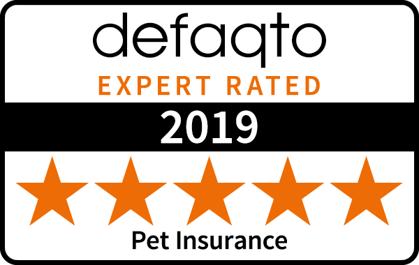 Pet Insurance - 12 Months for the Price of 9 | Direct Line
