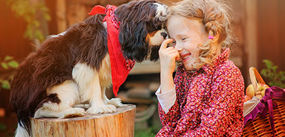 Young girl laughing as her dog nibbles at her fingers