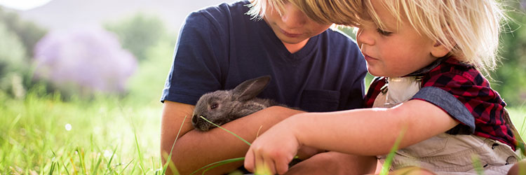 Two small children cuddling a rabbit in a field